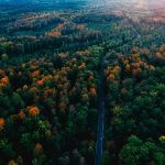 Imagen dron selva Negra Alemana