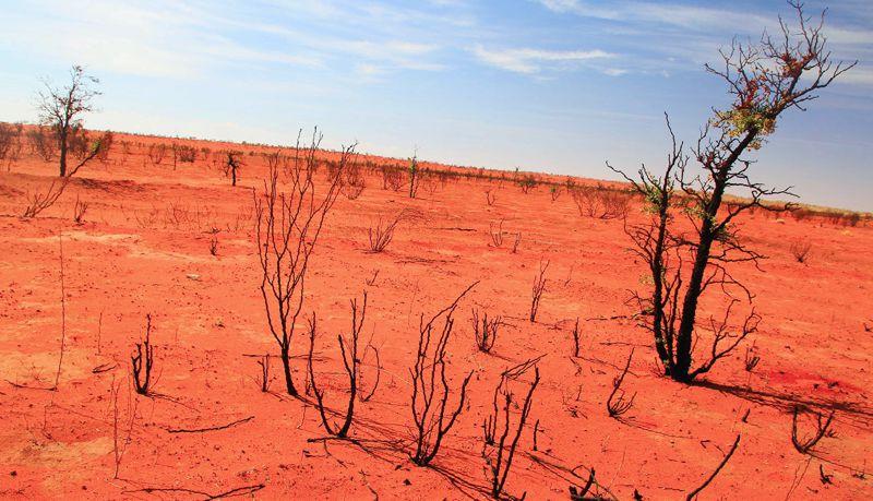 Tierras áridas en desierto Simpson Australia